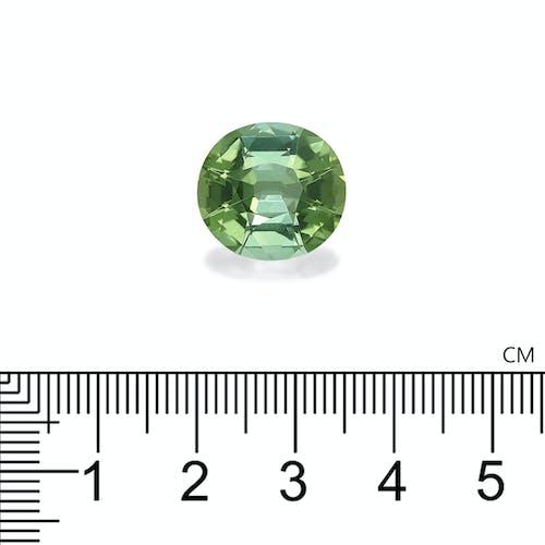 TG0633 : 10.69ct Green Tourmaline
