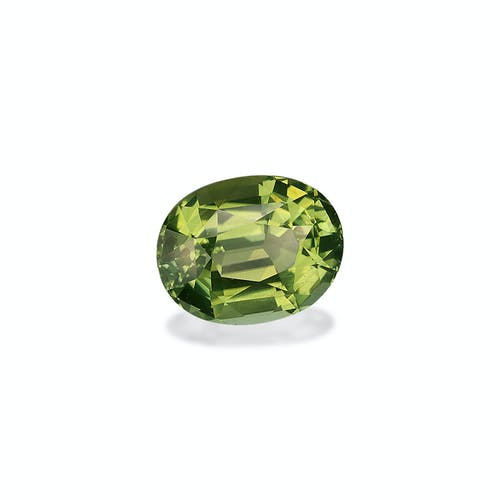 TG0643 : 11.65ct Pale Green Tourmaline