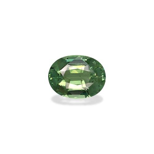 TG0647.jpg?auto=format&ixlib=php 3.3 - 9.68ct Basil Green Tourmaline stone