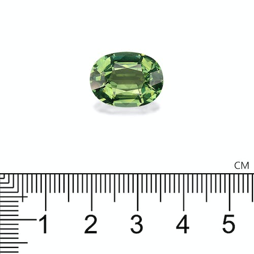 TG0652 : 10.24ct Green Tourmaline – 16x12mm