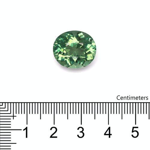 TG0659 : 11.74ct Green Tourmaline Scale Image