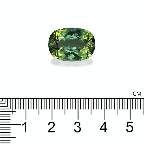 TG0668 : 12.51ct Green Tourmaline –