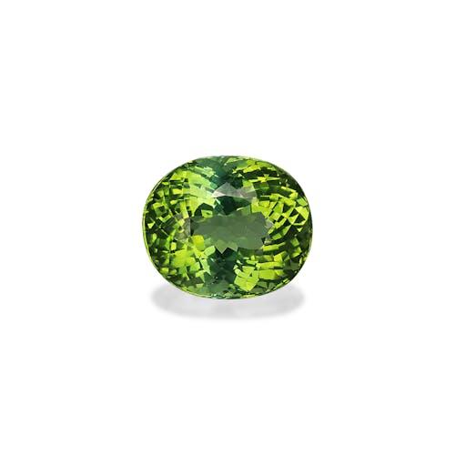 TG0688 : 7.41ct Green Tourmaline – 12x10mm
