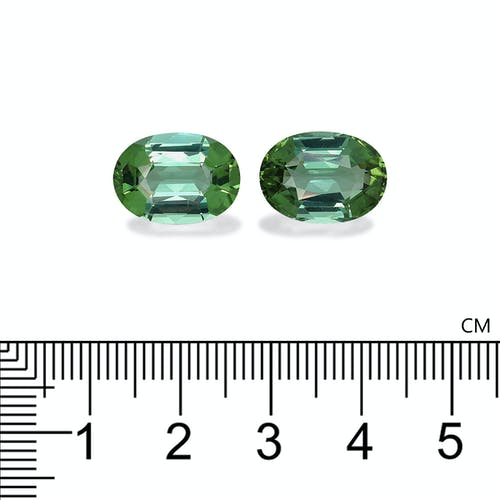 TG0689 2.jpg?auto=format&ixlib=php 3.3 - 13.93ct Green Tourmaline stone