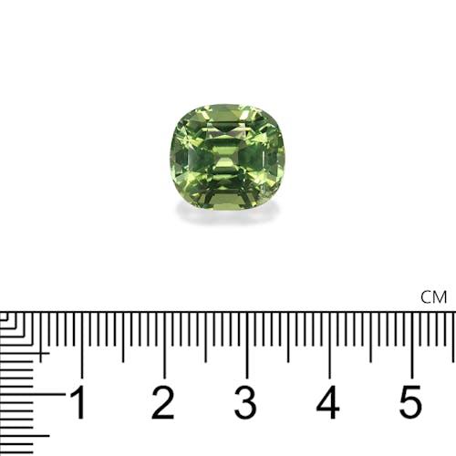 TG0710 2.jpg?auto=format&ixlib=php 3.3 - 12.10ct Lime Green Tourmaline stone