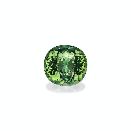 TG0711 : 10.64ct Green Tourmaline