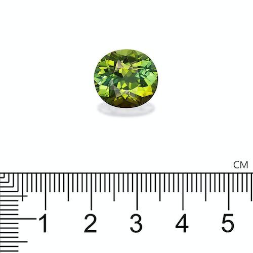 TG0712 2.jpg?auto=format&ixlib=php 3.3 - 9.78ct Pistachio Green Tourmaline stone