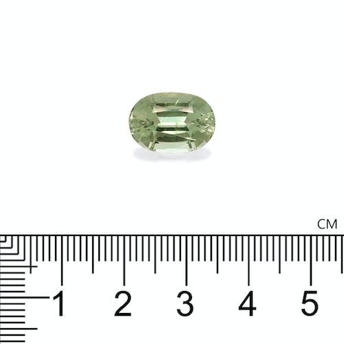 TG0747 : 7.38ct Green Tourmaline Scale Image