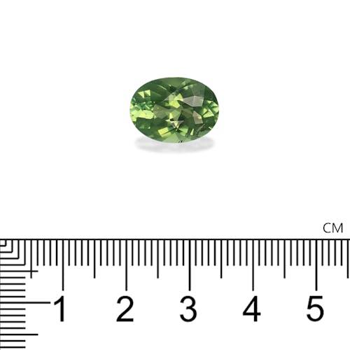 TG0749 2.jpg?auto=format&ixlib=php 3.3 - 6.17ct Pistachio Green Tourmaline stone