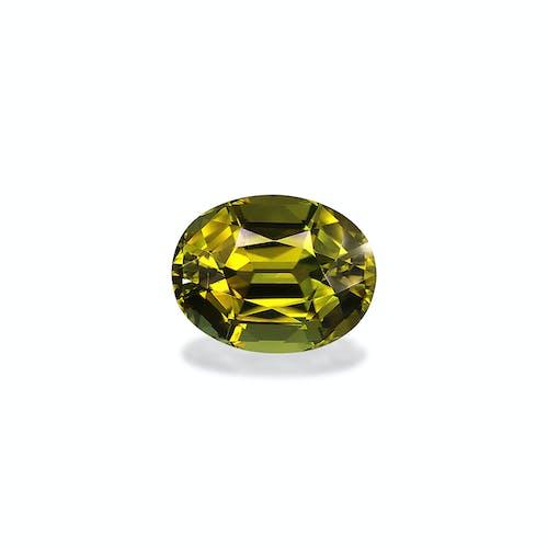 TG0756.jpg?auto=format&ixlib=php 3.3 - 14.47ct Pistachio Green Tourmaline stone