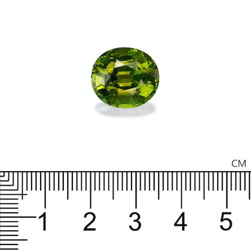 TG0757 : 11.05ct Moss Green Tourmaline – 15x13mm