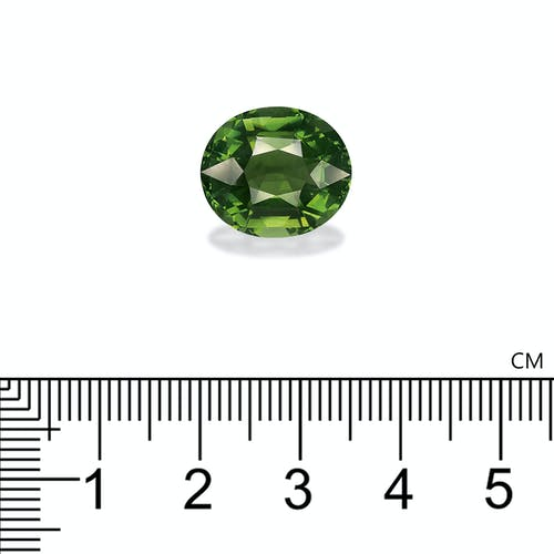 TG0760 : 10.98ct Green Tourmaline Scale Image