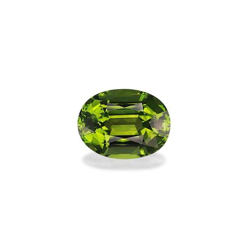 TG0769.jpg?auto=format&ixlib=php 3.3 - 12.15ct Green Tourmaline stone 16x12mm