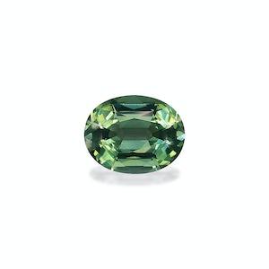 TG0771 : 13.73ct Green Tourmaline