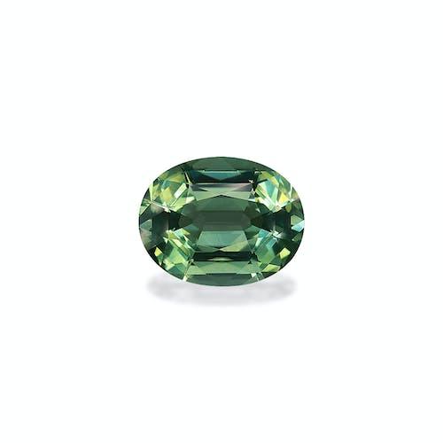 TG0771.jpg?auto=format&ixlib=php 3.3 - 13.73ct Seafoam Green Tourmaline stone