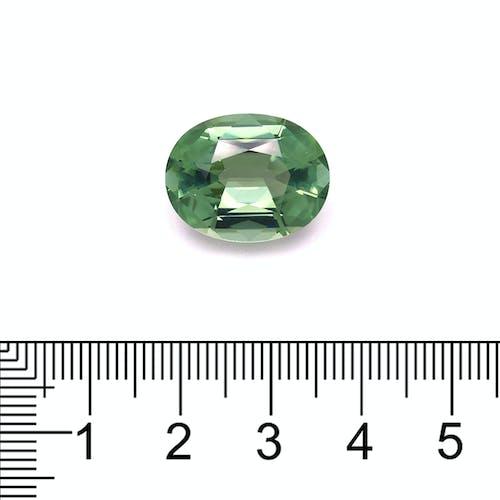 TG0771 : 13.73ct Green Tourmaline Scale Image