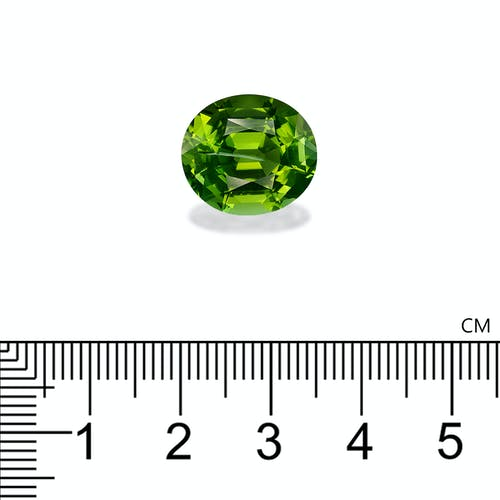 TG0773 : 9.84ct Green Tourmaline – 15x13mm