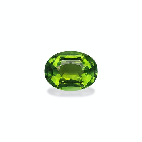 TG0791.jpg?auto=format&ixlib=php 3.3 - 12.19ct Moss Green Tourmaline stone