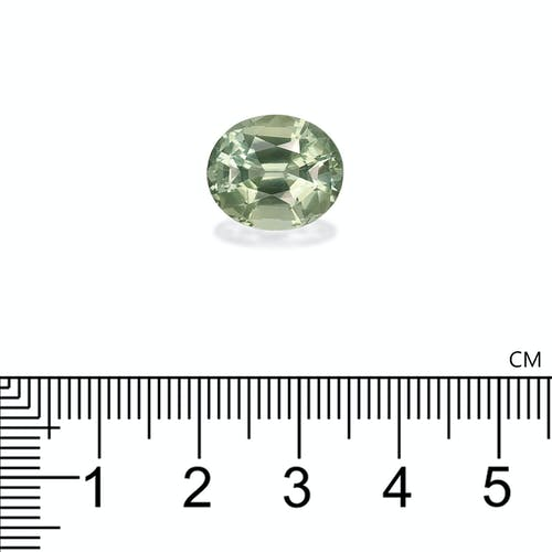 TG0807 : 8.75ct Green Tourmaline Scale Image