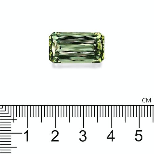 TG0810 2.jpg?auto=format&ixlib=php 3.3 - 16.62ct Olive Green Tourmaline stone