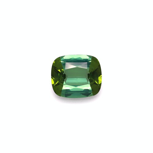 TG0818 : 11.76ct Green Tourmaline