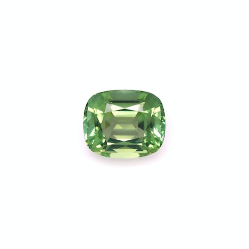 TG0821 : 13.31ct Green Tourmaline