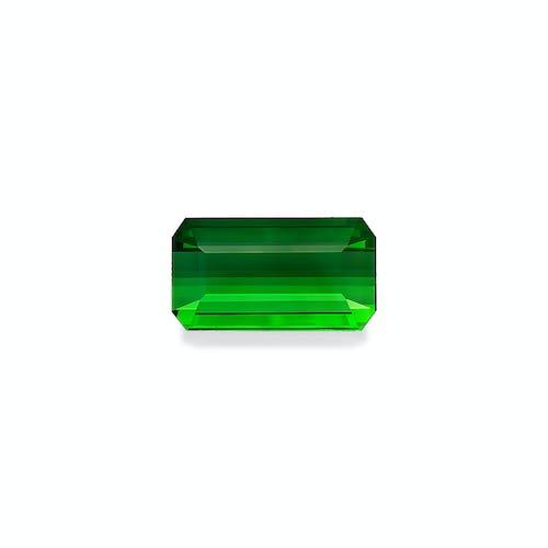 TG0825 : 79.71ct Green Tourmaline
