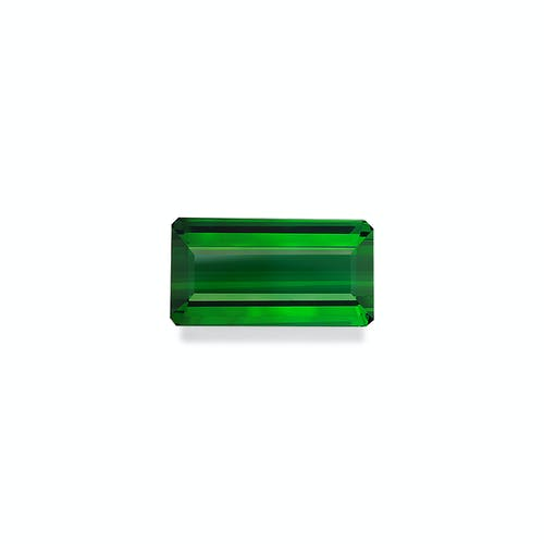 TG0838 : 98.92ct Vivid Green Tourmaline