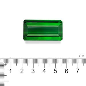 TG0838 : 98.92ct Green Tourmaline Scale Image