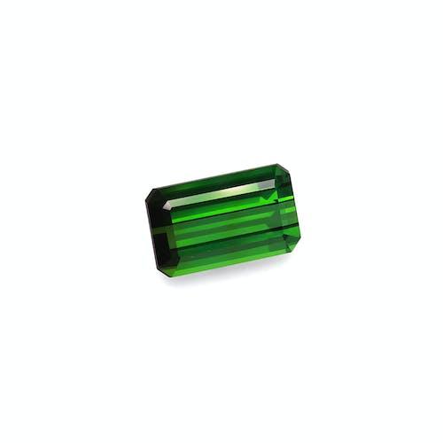 TG0845 1.jpg?auto=format&ixlib=php 3.3 - 18.74ct Vivid Green Tourmaline stone