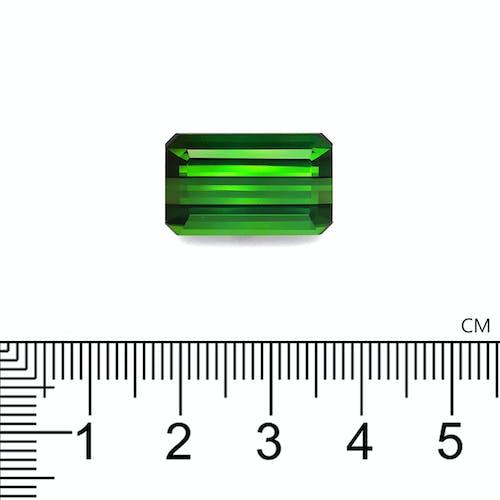 TG0845 2.jpg?auto=format&ixlib=php 3.3 - 18.74ct Vivid Green Tourmaline stone