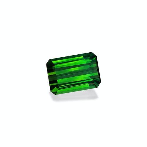 TG0847 1.jpg?auto=format&ixlib=php 3.3 - 14.55ct Vivid Green Tourmaline stone