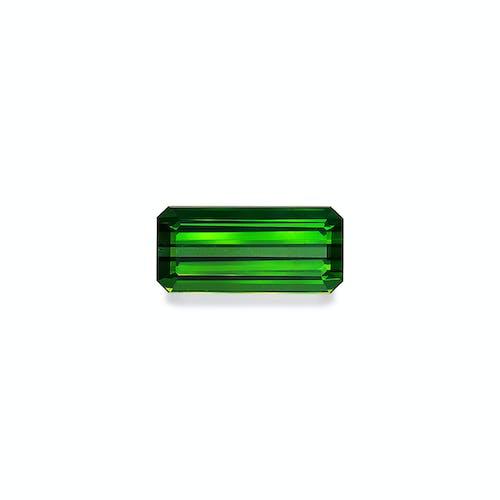 TG0855.jpg?auto=format&ixlib=php 3.3 - 17.18ct Moss Green Tourmaline stone