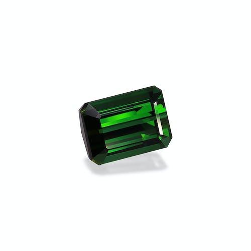 TG0856 1.jpg?auto=format&ixlib=php 3.3 - 24.81ct Vivid Green Tourmaline stone