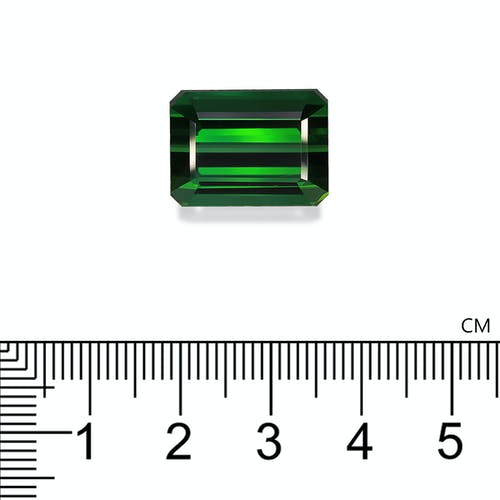 TG0856 2.jpg?auto=format&ixlib=php 3.3 - 24.81ct Vivid Green Tourmaline stone