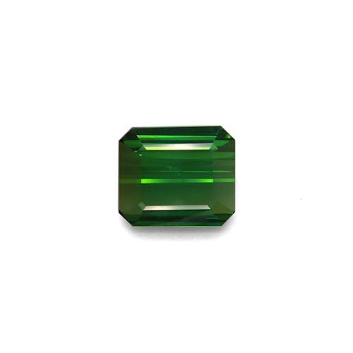 TG0860.jpg?auto=format&ixlib=php 3.3 - 13.45ct Vivid Green Tourmaline stone