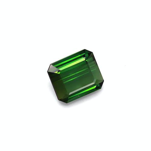 TG0860 1.jpg?auto=format&ixlib=php 3.3 - 13.45ct Vivid Green Tourmaline stone