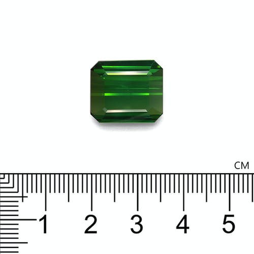 TG0860 2.jpg?auto=format&ixlib=php 3.3 - 13.45ct Vivid Green Tourmaline stone