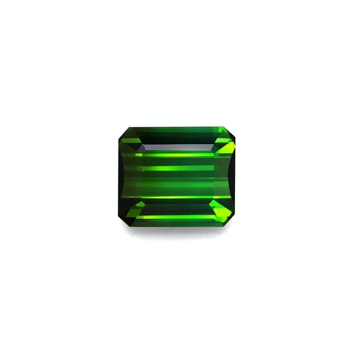 TG0863.jpg?auto=format&ixlib=php 3.3 - 15.85ct Moss Green Tourmaline stone