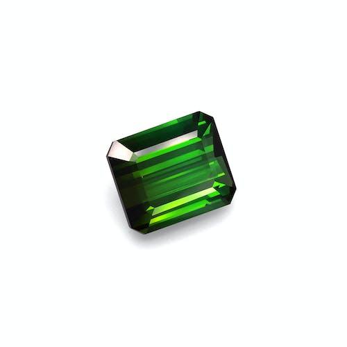 TG0863 1.jpg?auto=format&ixlib=php 3.3 - 15.85ct Moss Green Tourmaline stone