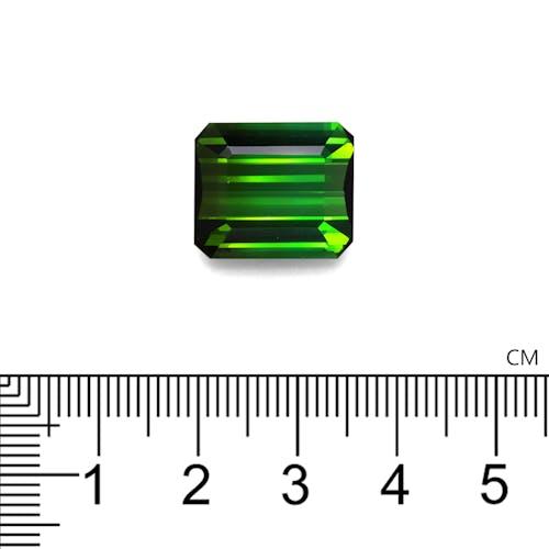 TG0863 2.jpg?auto=format&ixlib=php 3.3 - 15.85ct Moss Green Tourmaline stone