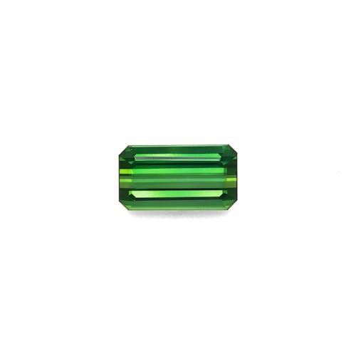 TG0864.jpg?auto=format&ixlib=php 3.3 - 15.32ct Vivid Green Tourmaline stone