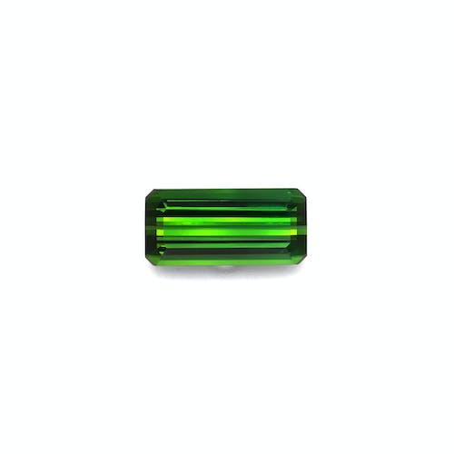 TG0865.jpg?auto=format&ixlib=php 3.3 - 10.89ct Moss Green Tourmaline stone