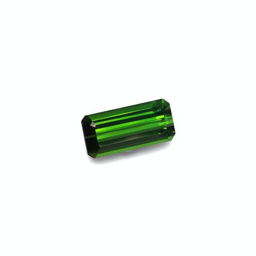 TG0865 1.jpg?auto=format&ixlib=php 3.3 - 10.89ct Moss Green Tourmaline stone