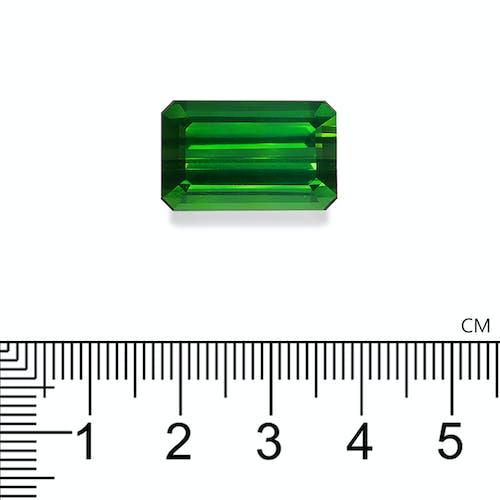 TG0866 2.jpg?auto=format&ixlib=php 3.3 - 23.17ct Vivid Green Tourmaline stone