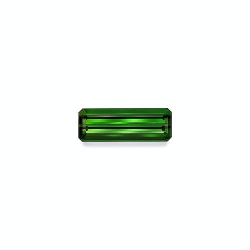TG0867.jpg?auto=format&ixlib=php 3.3 - 13.11ct Moss Green Tourmaline stone