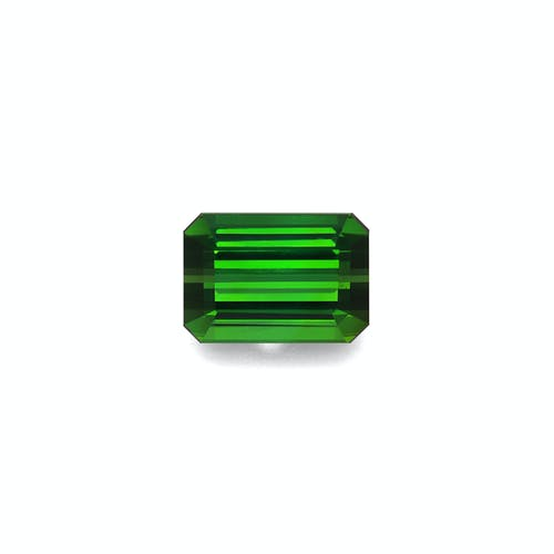 TG0870.jpg?auto=format&ixlib=php 3.3 - 11.70ct Moss Green Tourmaline stone