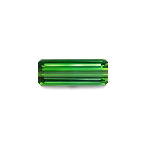 TG0871.jpg?auto=format&ixlib=php 3.3 - 15.90ct Vivid Green Tourmaline stone
