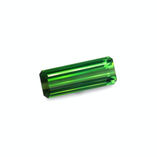 TG0871 1.jpg?auto=format&ixlib=php 3.3 - 15.90ct Vivid Green Tourmaline stone
