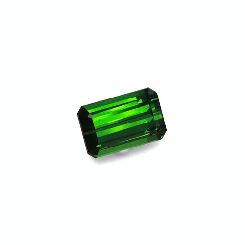 TG0872 1.jpg?auto=format&ixlib=php 3.3 - 12.85ct Vivid Green Tourmaline stone